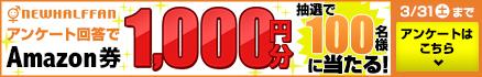 アンケート回答でamazon券1000円GET