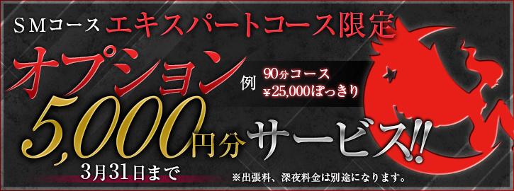 SMエキスパートコース限定オプション5000円分サービス!!